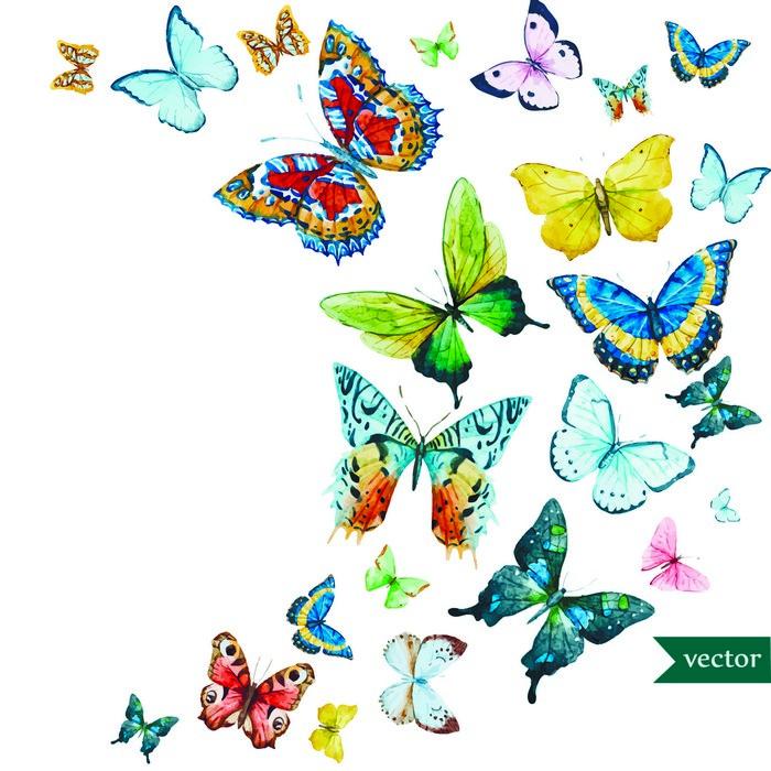 Бабочка картинка для открытки 98